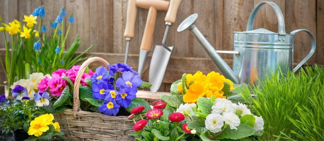 Hamarosan kezdődik a  tavaszi munka a kertekben
