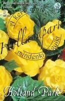 Begónia nagyvirágú sárga