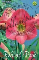Amarylis/Hippeastrum rózsaszín