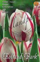 Tulipán Triumph Happy Generation